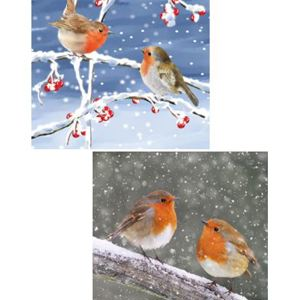 Winter Robin Twin Pack